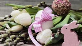 Jajka Wielkanocne – zdrowe, czy nie? Zdrowie, LIFESTYLE - Jajka Wielkanocne – zdrowe, czy nie? Podnoszą cholesterol, zbyt długo się trawią, obciążają żołądek, dodają nam parę kilogramów, a do tego jeszcze ta mrożąca krew w żyłach salmonella. Jak to z nimi w końcu jest? Jeść, czy nie jeść? Szkodzą, czy nie?