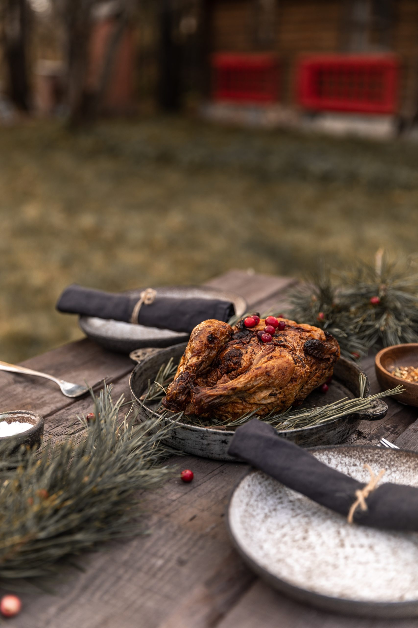 """Gęsina na św. Marcina """" gęsie mięso w wydaniu Ewy Wachowicz"""